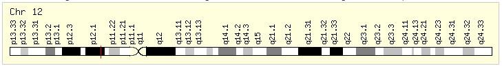 KRAS基因组.jpg